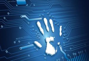 信息犯罪与电子取证:信息运行相关犯罪